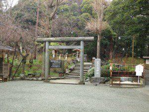 tokyo_d2_25
