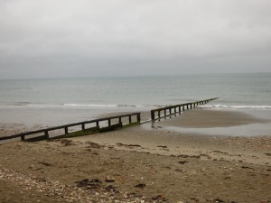 Wight-08
