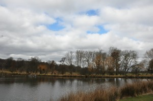 RichmondPark_04