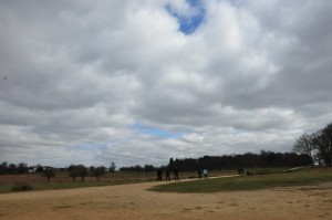 RichmondPark_12