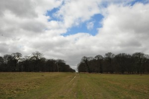 RichmondPark_14