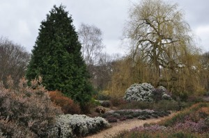 RichmondPark_37