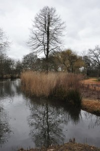 RichmondPark_38