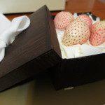 東海堂白い草莓