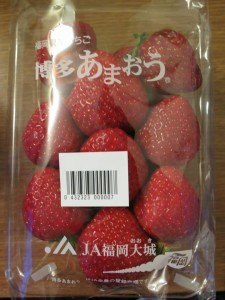 tokyo_d2_36